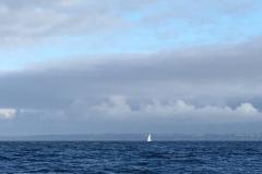 2020 Camare sur Mer to Douarneze (Merle pildid)